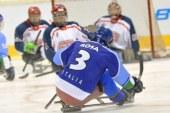 """Sledge Hockey: da domani la Serie """"A"""" 2015-2016"""